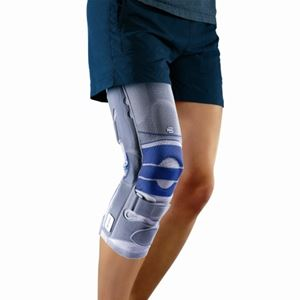 Picture of SofTec Genu (torn ligaments, collateral ligament injury, arthritis) ** DISCONTINUED **
