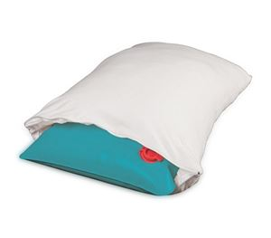 Picture of Water Pillow