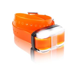 Picture of Dogtra EDGE 1 Mile Extra Dog Collar Orange