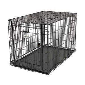 """Picture of Midwest Ovation Single Door Crate with Up and Away Door Black 49.00"""" x 31"""" x 32.25"""""""