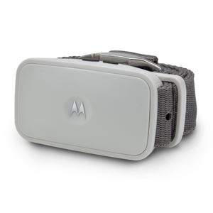 Picture of Motorola Dog Shock-Free No-Bark Collar with Dual Sonic Technology Gray