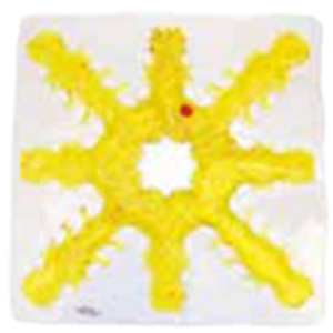 Picture of Light Box Gel-Maze Series: 8 Spoke Snow Flake - Clear