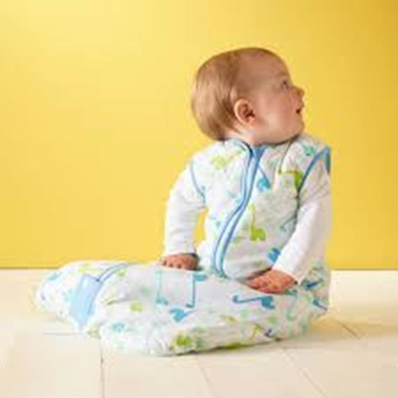 Picture of GROBAG - Baby Sleeping Bags For Travel Little Dino
