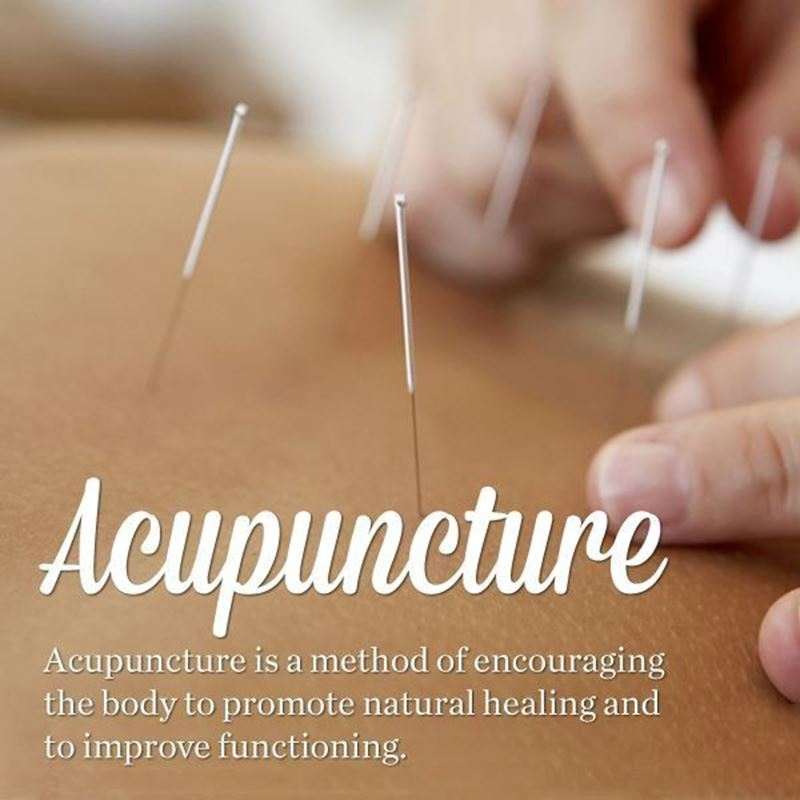 Picture for category Acupuncture