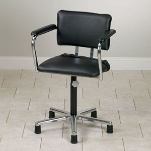 Picture of Low Hydrotherapy Chair without Casters