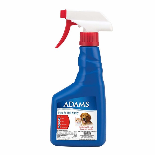 Adams Flea and Tick Spray for Cats and Dogs 16 ounces