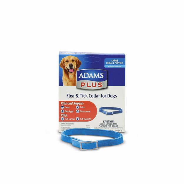 Adams Plus Flea and Tick Collar for Large Dogs