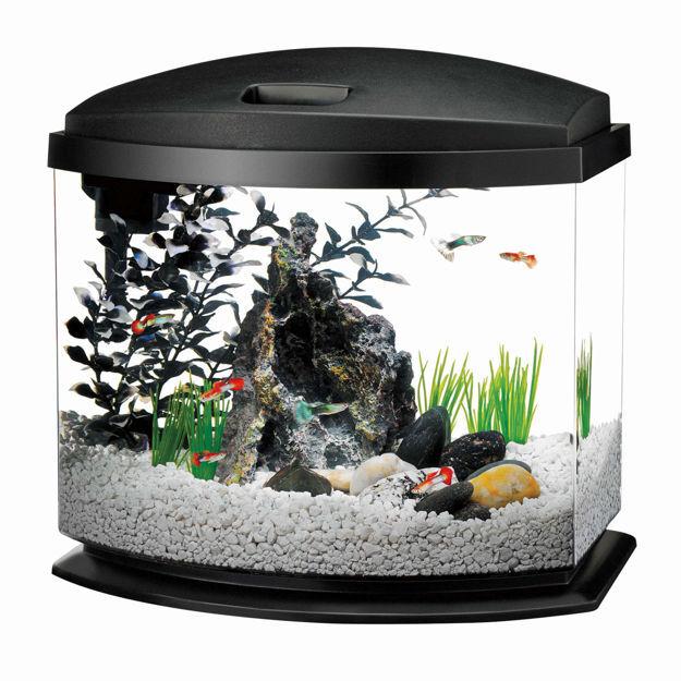 "Aqueon MiniBow LED Aquarium Kit 1 Gallon Black 8.5"" x 6.25"" x 9.25"""