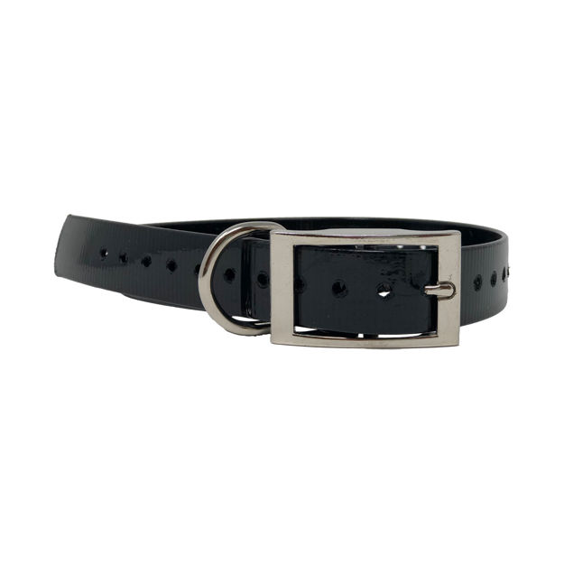 """The Buzzard's Roost Replacement Collar Strap 1"""" Black 1"""" x 24"""""""