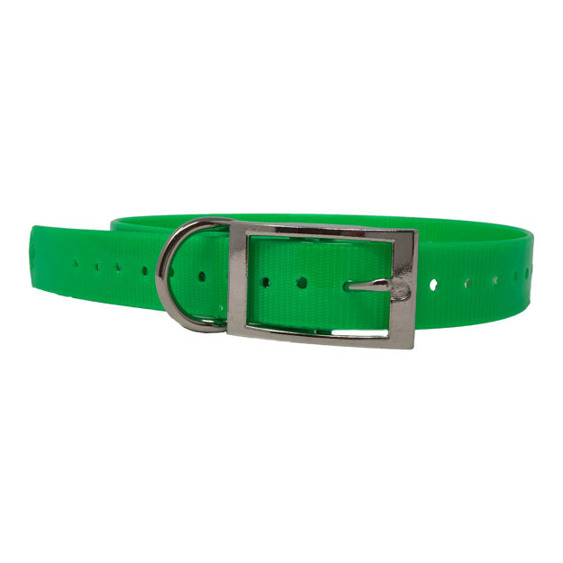 "The Buzzard's Roost Replacement Collar Strap 1"" Neon Green 1"" x 24"""