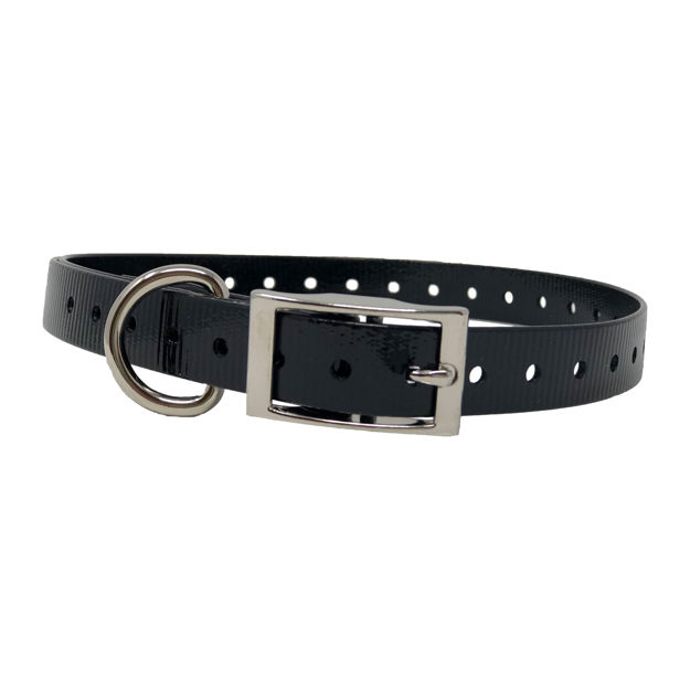 """The Buzzard's Roost Replacement Collar Strap 3/4"""" Black 3/4"""" x 24"""""""