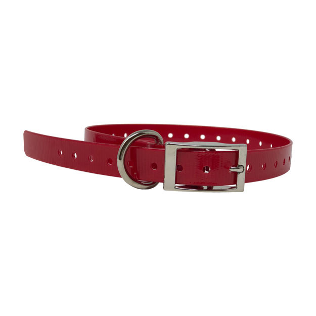 """The Buzzard's Roost Replacement Collar Strap 3/4"""" Red 3/4"""" x 24"""""""