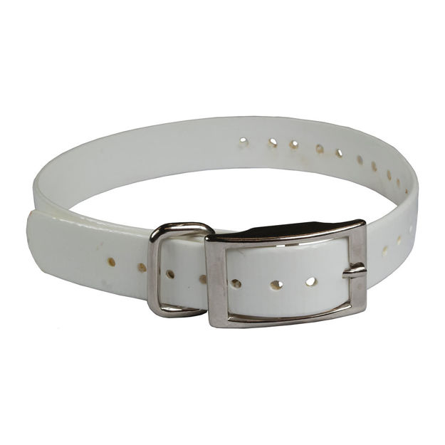 """The Buzzard's Roost Replacement Collar Strap 3/4"""" White 3/4"""" x 24"""""""