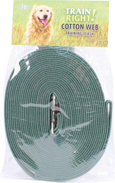 "Coastal Pet Products Train Right Cotton Web Training Leash 30ft Green 5/8"" x 30ft"