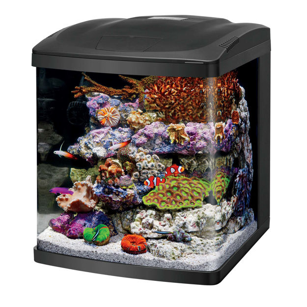"Coralife LED BioCube 16 Aquarium Kit Black 15"" x 16.75"" x 17.5"""