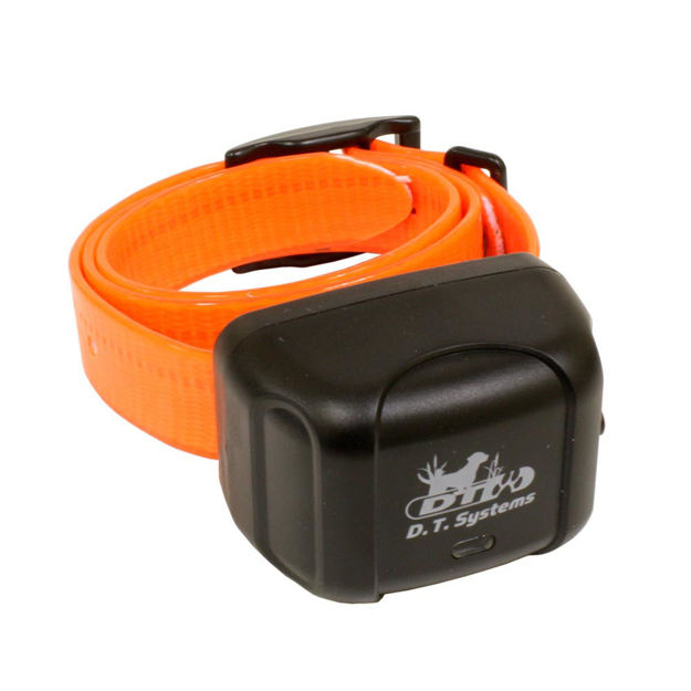 D.T. Systems Master Retriever Additional Collar Green