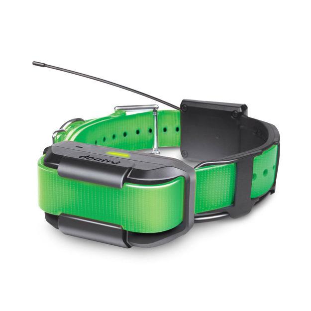 Dogtra Pathfinder Extra Collar Green