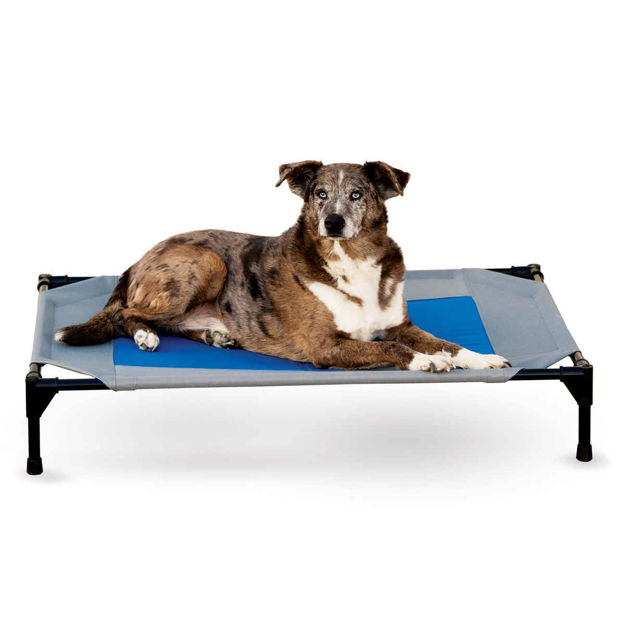 "Picture of K&H Pet Products Coolin' Pet Cot Large Gray / Blue 30"" x 42"" x 7"""