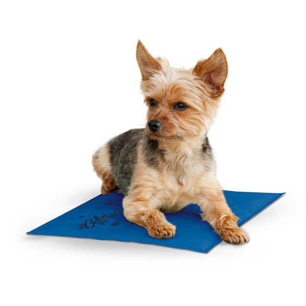 """Picture of K&H Pet Products Coolin Pet Pad Small Blue 11"""" x 15"""" x 0.75"""""""