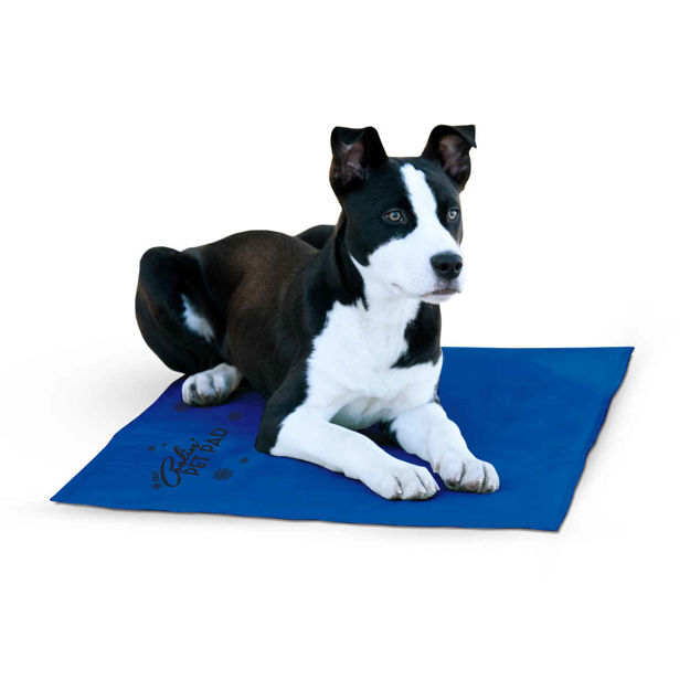 "Picture of K&H Pet Products Coolin Pet Pad Large Blue 20"" x 36"" x 0.75"""