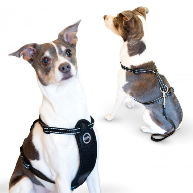 K&H Pet Products Travel Safety Pet Harness Extra Large Black