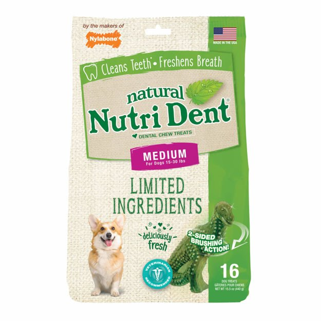 Picture of Nylabone Nutri Dent Limited Ingredient Dental Chews Fresh Breath T-Rex Medium 16 count