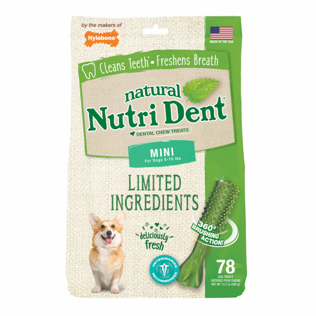 Picture of Nylabone Nutri Dent Limited Ingredient Dental Chews Fresh Breath Mini 78 count