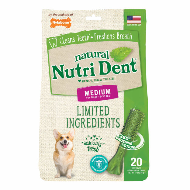 Nylabone Nutri Dent Limited Ingredient Dental Chews Fresh Breath Medium 20 count