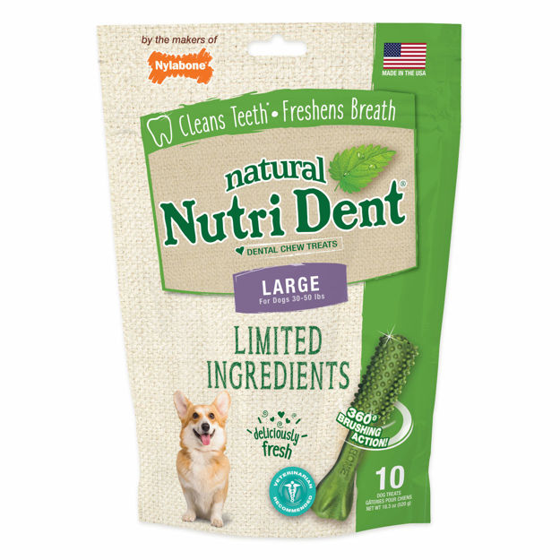 Nylabone Nutri Dent Limited Ingredient Dental Chews Fresh Breath Large 10 count
