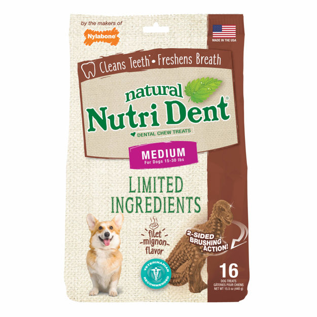 Nylabone Nutri Dent Limited Ingredient Dental Chews Filet Mignon T-Rex Medium 16 count