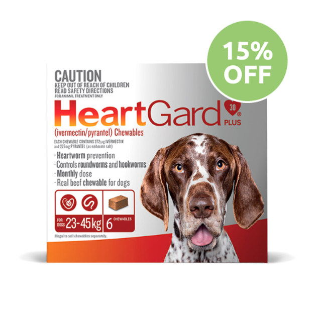 Heartgard Plus Chewable For Large Dog