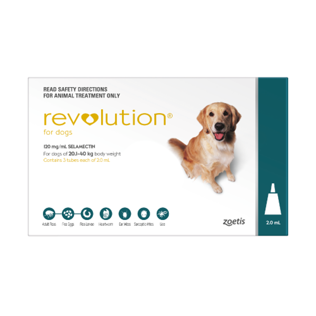 Picture of REVOLUTION FOR LARGE DOGS (TEAL)