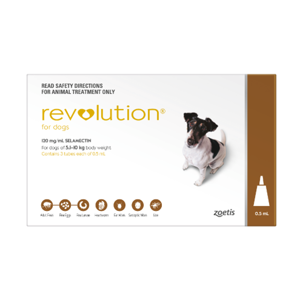 Picture of REVOLUTION FOR SMALL DOGS (BROWN)